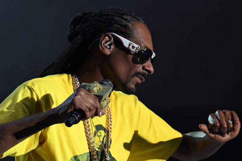 Snoop Dogg, Concert, Dancing