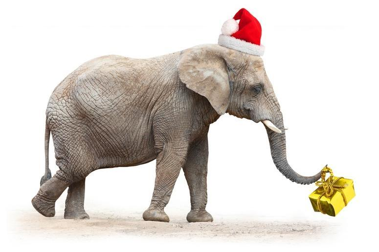 Check Out The Top 19 White Elephant Gifts This Christmas! | 100.3 ...