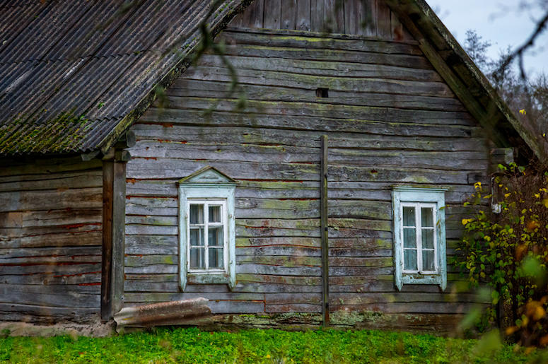 Diry, Old, Wood, House, Forest
