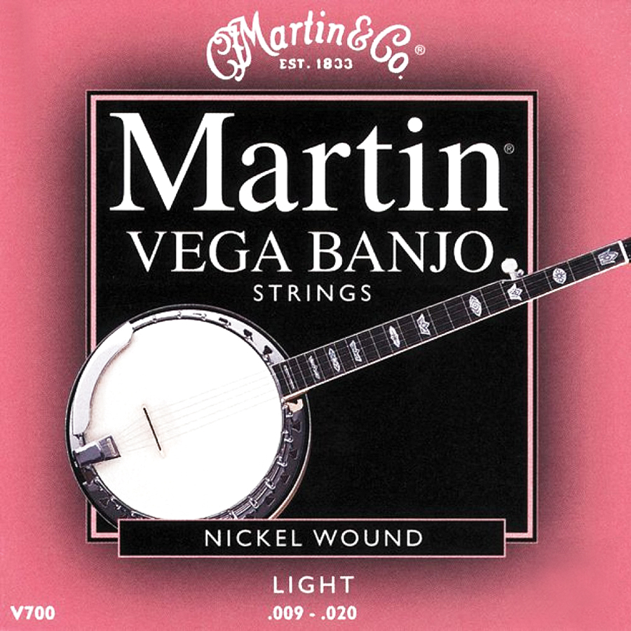 VEGA 5-STRING BANJO  LIGHT