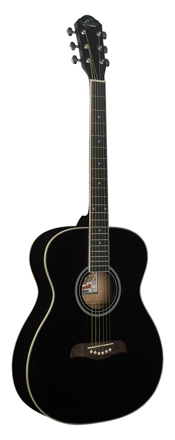 Auditorium Acoustic           Black
