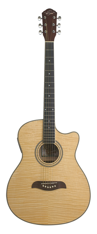 Auditorium Acoustic Electric  W/EV-T Natural