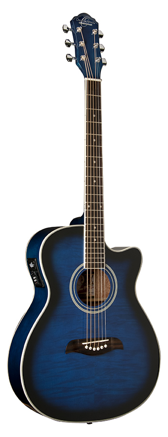 Exclusive Guitar  Ac/Elec     Flame Trans Blue