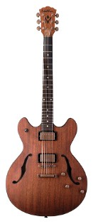 ~HB Electric Guitar           w/case distressed matt