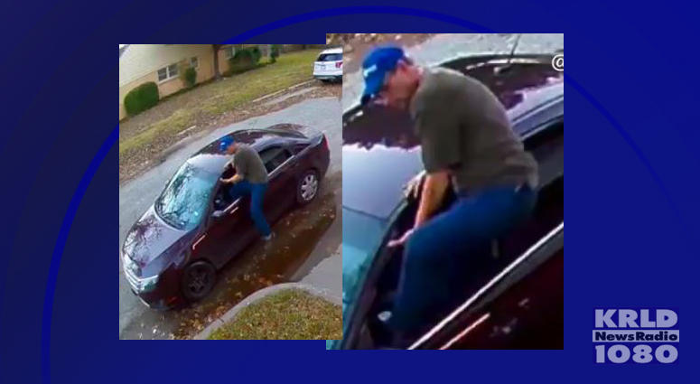 Fort Worth Garage Thief