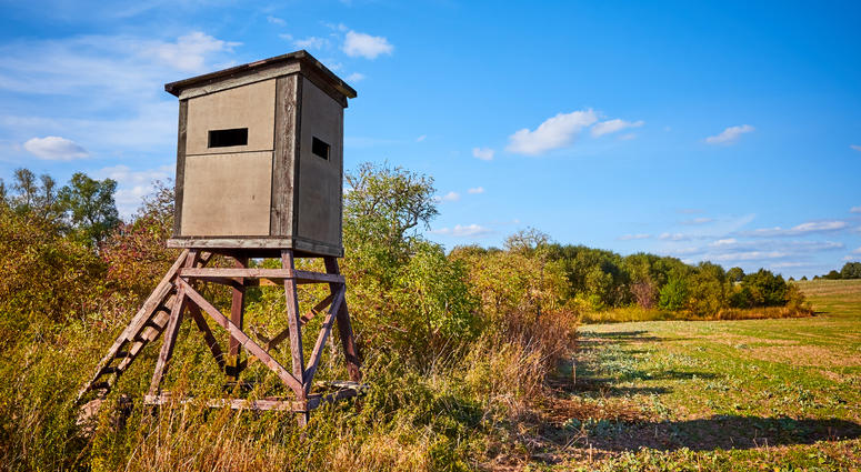 Deer Blind, Deer Hunting