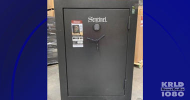 Stack-On Sentinel safe