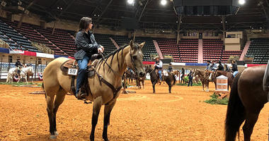 Fort Worth Stock Show and Rodeo