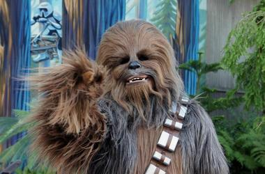 Chewbacca Is Bringing Good News To Patients