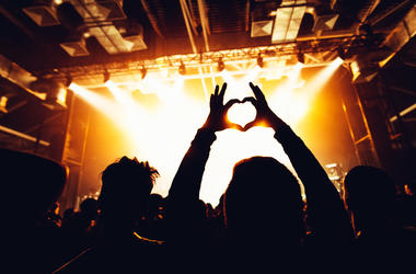 concert, audience, heart, the voice kids, germany