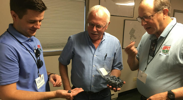 N.J. Agriculture Secretary Doug Fisher traveled to the heart of blueberry country