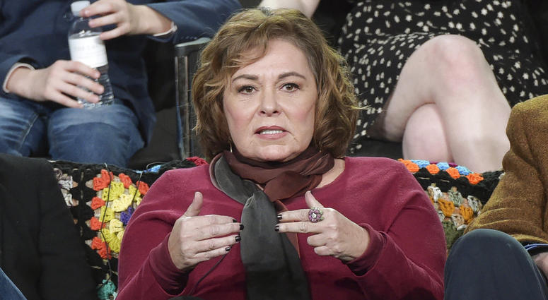 "Roseanne Barr participates in the ""Roseanne"" panel during the Disney/ABC Television Critics Association Winter Press Tour in January."