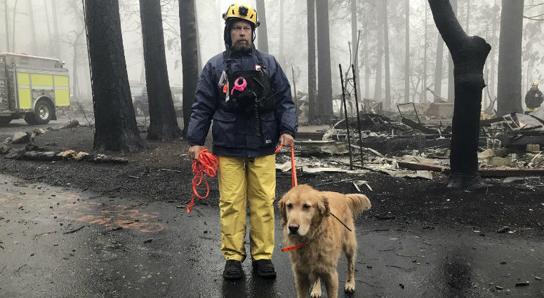Eric Darling and his dog Wyatt are part of a search team from Orange County in Southern California who are among several teams conducting a second search of a mobile home park after the deadly Camp Fire in Paradise, Calif., Friday, Nov. 23, 2018.