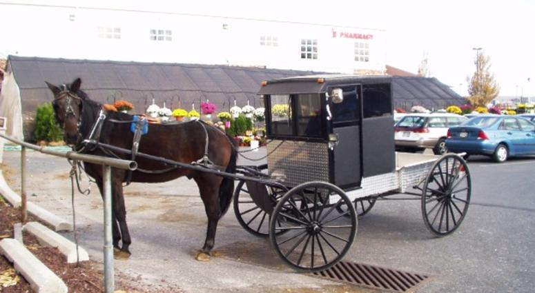 An Amish buggy