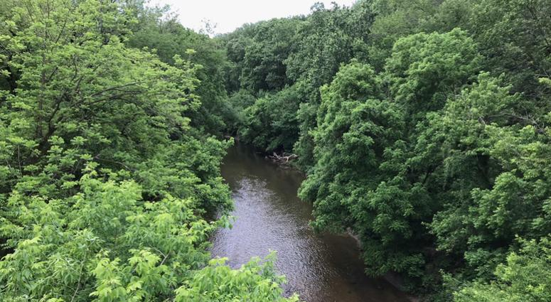 Pennypack Creek