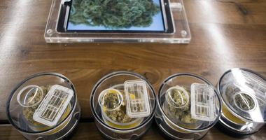 Jan 2, 2018; West Hollywood, CA, USA; Marijuana samples on display at MedMen in West Hollywood. January 1 it became legal in California to sell recreational marijuana, but many shops began sales on Jan.2.