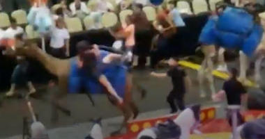 Seven people, most of them children, were injured when a startled camel started bucking during a Pittsburgh circus.