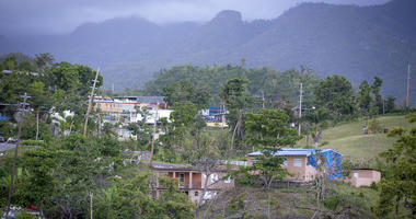 Trees remained damaged and destroyed on the edge of a lake and blue FEMA tarps covered rooftops more than seven months after Hurricane Maria, Wednesday, April 18, 2018 in Villalba, Puerto Rico.