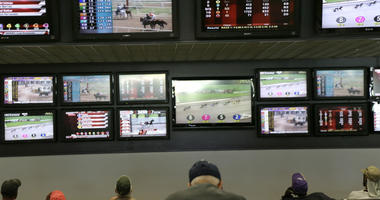 In this May 14, 2018, file photo, men watch horse racing on an array of screens at Monmouth Park Racetrack in Oceanport, N.J.