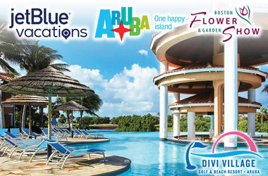 Spring Yourself To Aruba Divvy