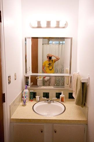 Diy Bathroom Renovation Edible Perspective