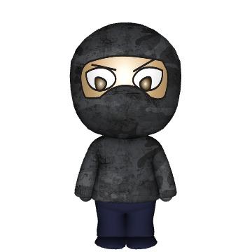 Ninja Mixee