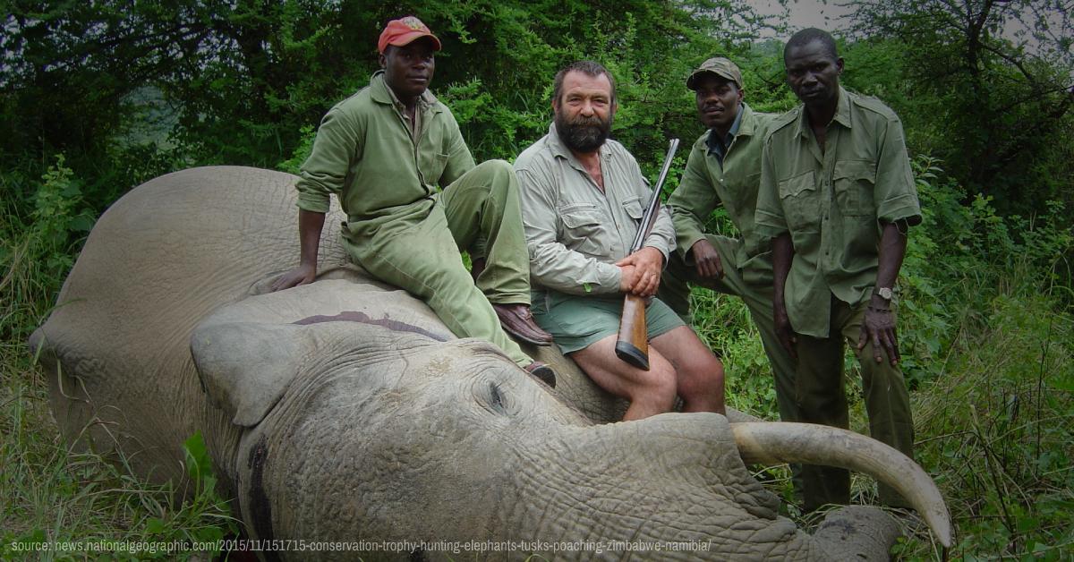 Secretary Zinke Do Not Allow Trophy Hunters To Kill Zimbabwes Elephants