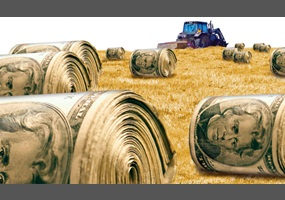 should agricultural subsidies be stopped