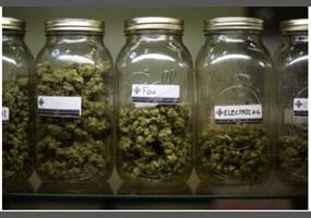 should marijuanas be legalized for medical use