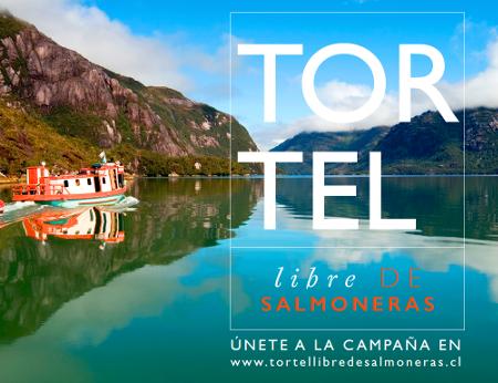 Tortel libre de Salmoneras.Unete a la campana en www.tortellibredesalmoneras.cl.