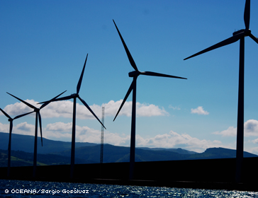 Promote Alternative Energy Development Such As Offshore Wind Energy