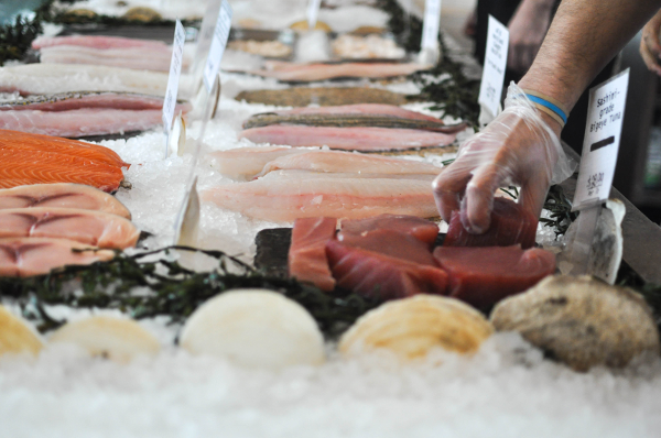 Tell President Obama's Task Force to institute seafood traceability