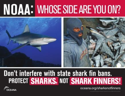 NOAA: Whose side are you on?