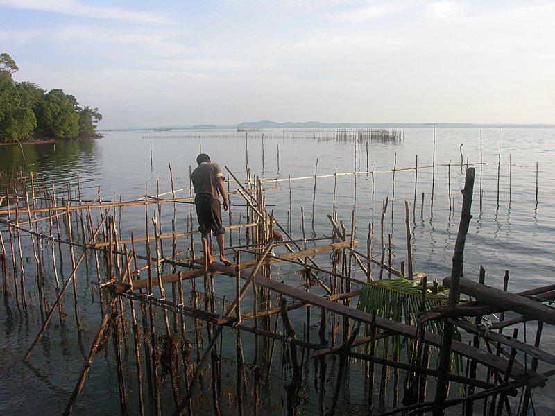 feb_20_1600_checking_fish_nets.jpg