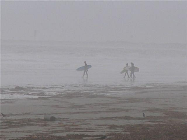 nov_07_sparky_017_surfers.jpg