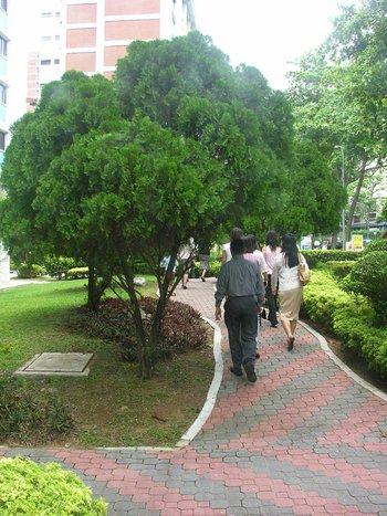 oct_26_9896_walking.jpg