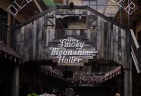The Holler in Gatlinburg Image