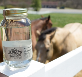 Let the Races Begin on May 3rd with the Ole Smoky Moonshine Mint Julep Derby-Day Cocktail!