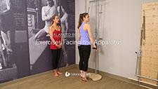 Exercises Facing the Apparatus