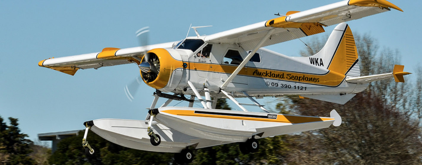 Auckland Seaplanes Amphib Beaver about to land.