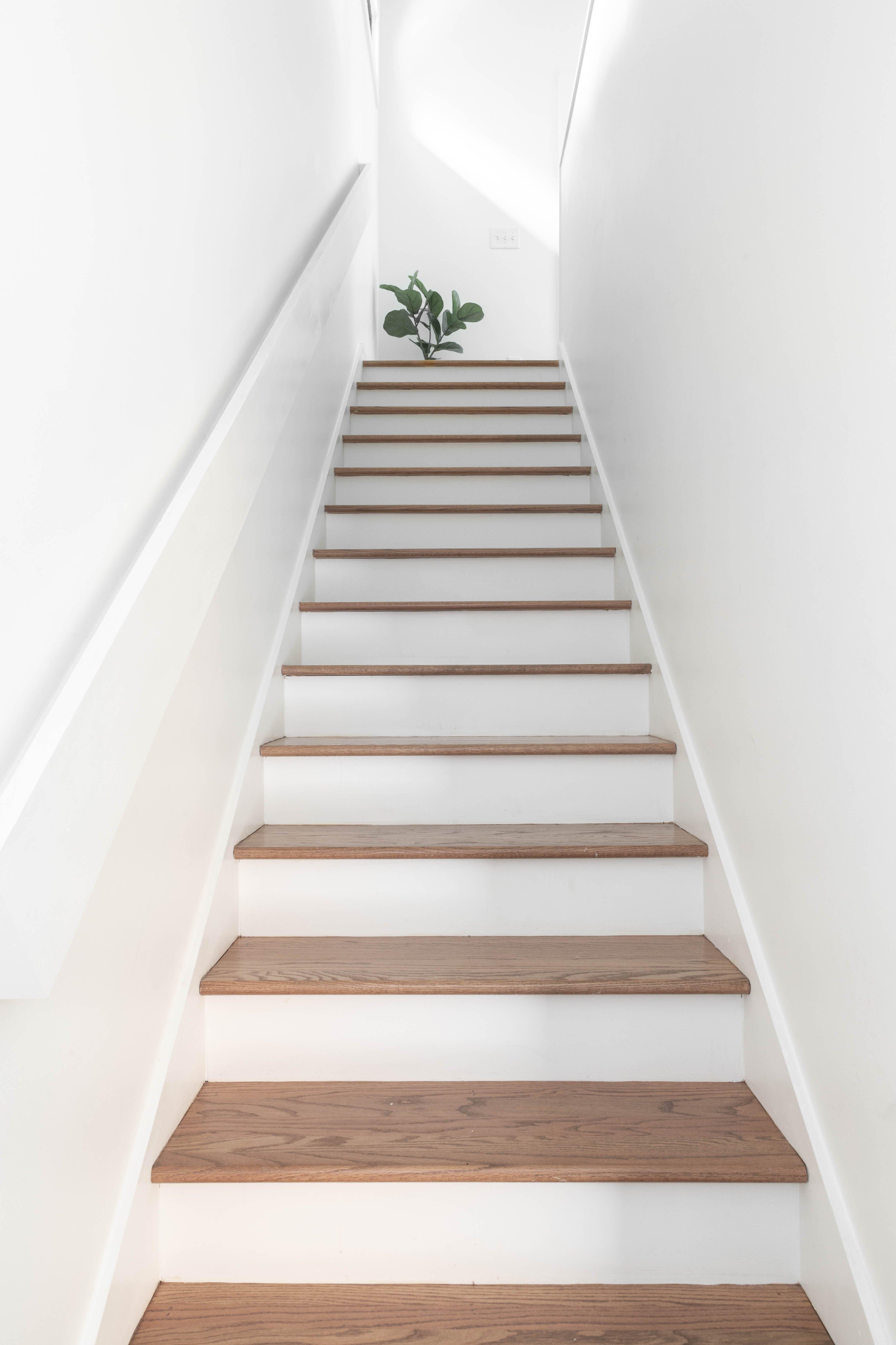 24 steps 20210707-IMG_8096.jpg