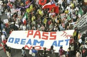 pass the dream act!