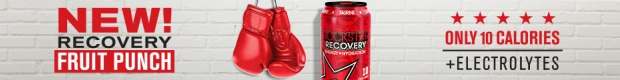 Recovery Fruit Punch