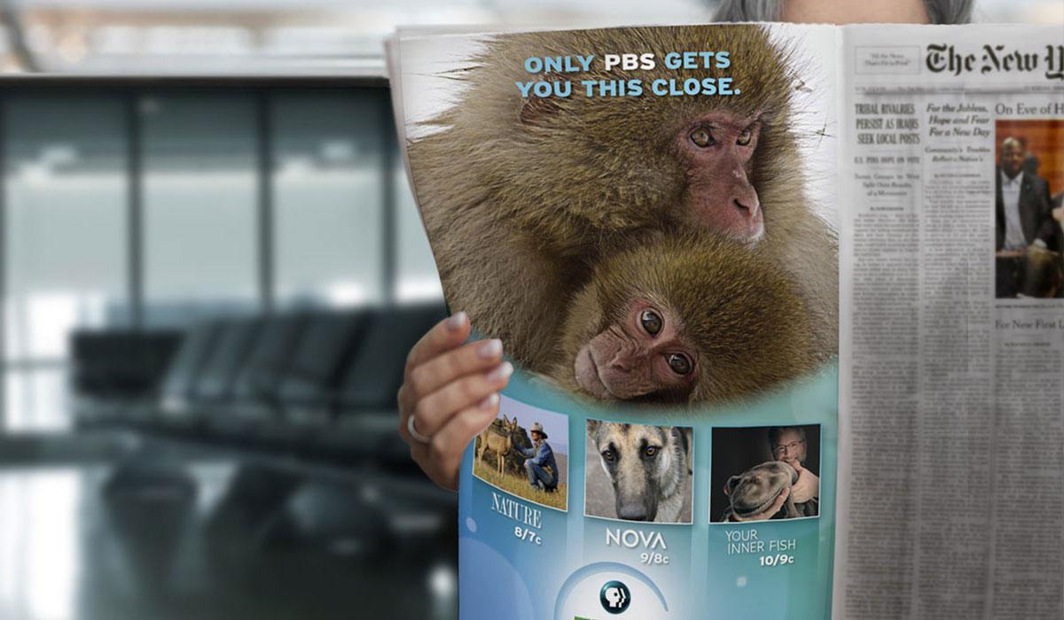 PBS: Think Wednesday Newspaper Ad