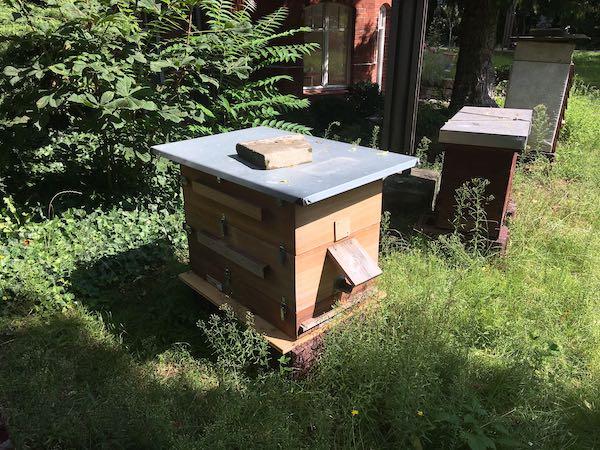 Bienenstöcke in Berlin