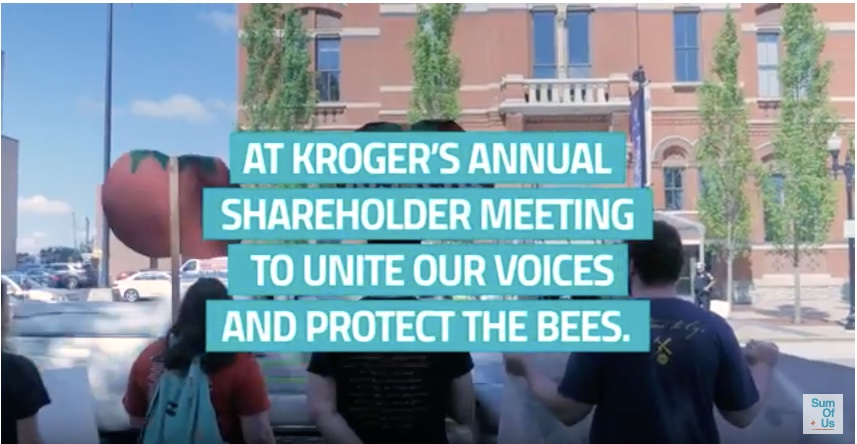 Watch the Kroger video