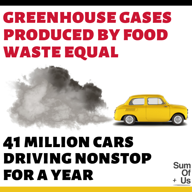 Greenhouse gases produced by food waste equal to 41 million cars driving continuously meme