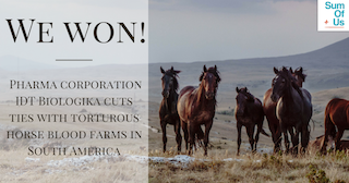 Win graphic: You helped get IDT Biologika to stop endorsing horse cruelty.