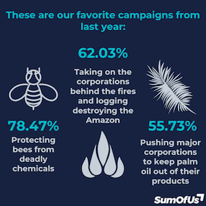 What were your favourite campaigns: 78% Protecting bees from deadly chemicals, 62% Taking on corporations behind the fires and logging destroying the Amazon, 55% Pushing major corporations to keep palm oil out of their products