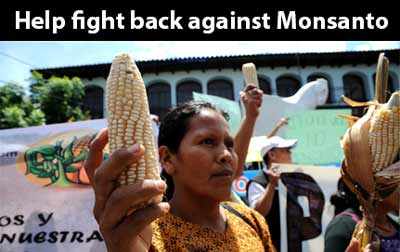 Monsanto is threatening to use trade agreements to overrule Guatemala's government. Will you chip in?